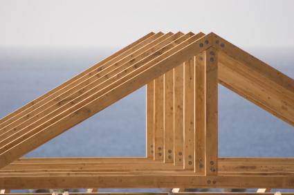 160113.Dachsparren
