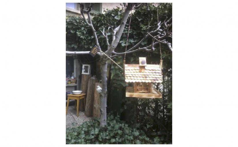 Das Vogelhaus von Bümis